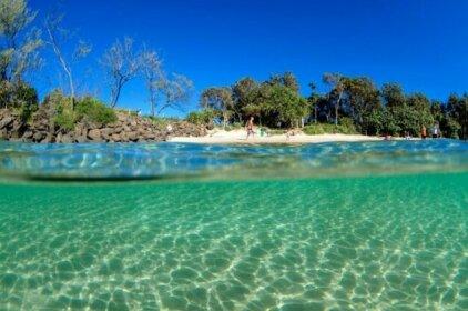 Sweet Love - Byron Bay Hinterland