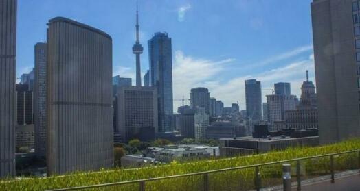 Toronto Escape Sapphire Suite