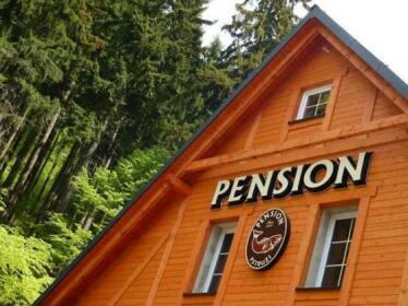 Pension Pstruzi