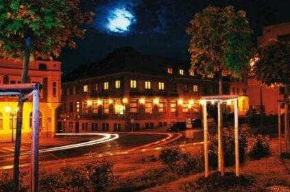 Hotel Zeleny Strom