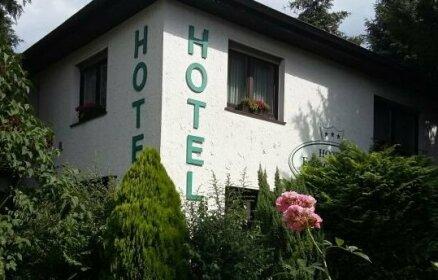 Hotel Froschkonig