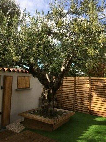 Aux delices de l'olivier