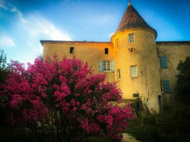 Chateau Gros Puy