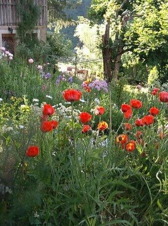 La Combe fleurie Villers-le-Lac