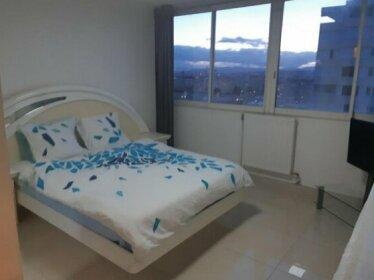Appartement Laurent Bonnevay