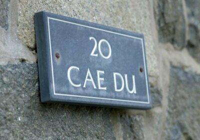20 Cae Du