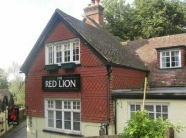 The Red Lion Hotel Betchworth