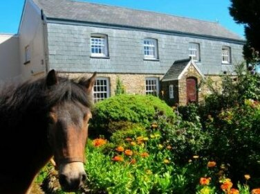 Twitchen Farm Bed & Breakfast Challacombe