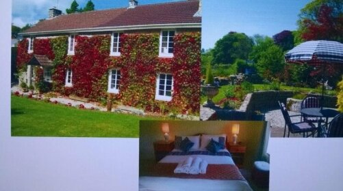 Ivy Cottage Luxulyan