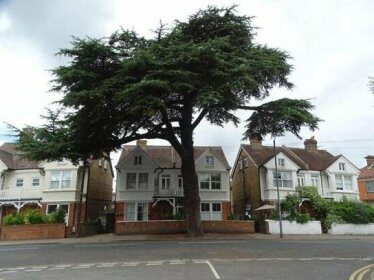 Cedar Tree Guest House