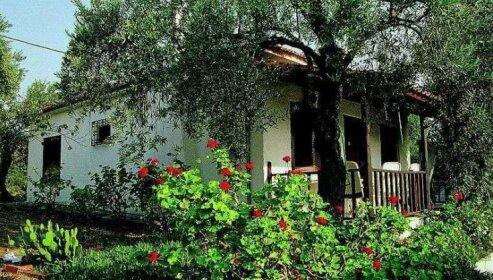 Agios Andreas Houses Hotel Milina