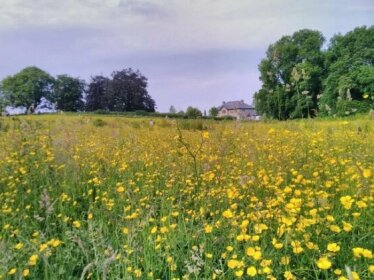 Castletownmoor Clinic & Permaculture Farm