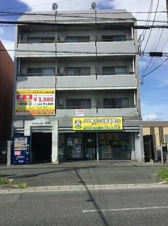 Business Manshon Piacrest Himawarikan