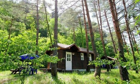 Forest House Yangyang