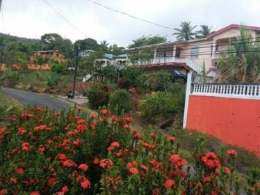 Tropical Stream Vacation Home