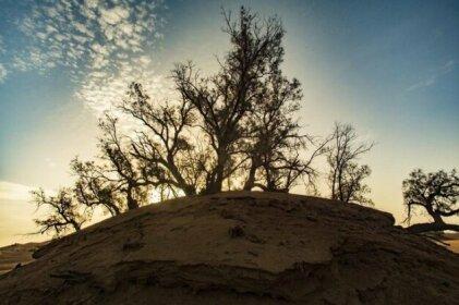 Authentic Desert Camp Erg Lihoudi