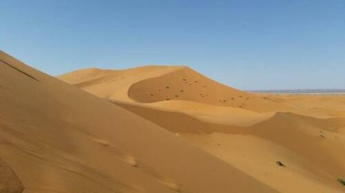 Billion Stars Camp Camelride