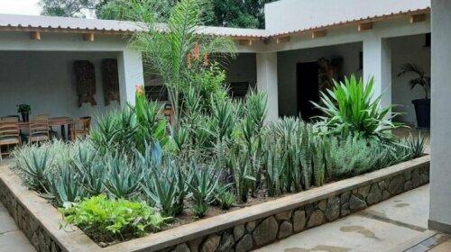 Mitengo House
