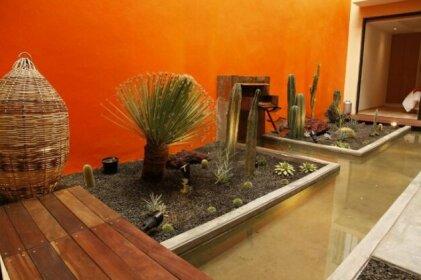 Coyoacan - Inn Fine Guesthouse