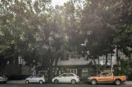 RioRhin Apts Location Reforma Angel