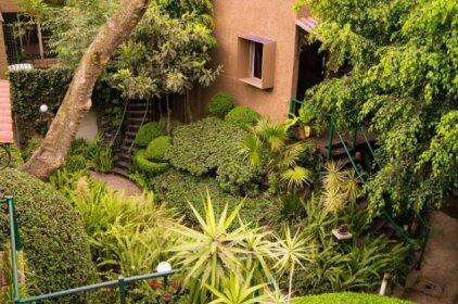 Suite 1-B El Rincon Garden House Welcome To San Angel