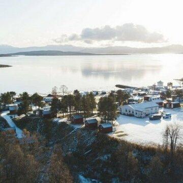 Norwegian Wild