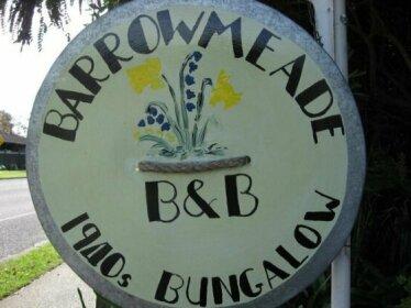 Barrowmeade