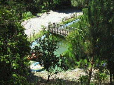 Quinta de S Vicente 317