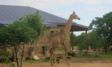 Mkhiweni Villa at Dombeya Wildlife Estate