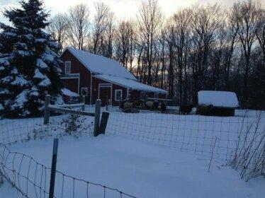 Bryn Meadow Farm and B&B