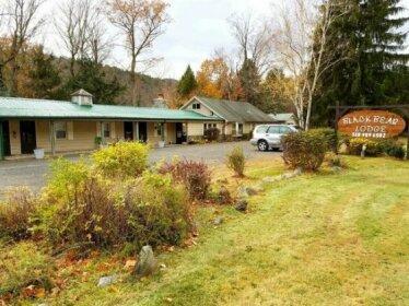 Black Bear Lodge Lexington