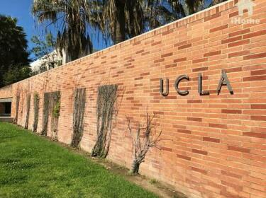 Brilliant Apartment Walk Distance to UCLA O9