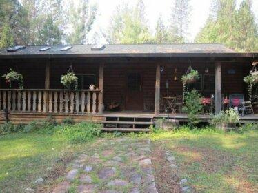 Mama Bear - Nevada City Retreats