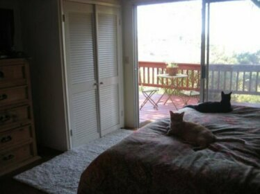 Homestay - Enjoys watching movies San Diego